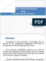 Network Border Protocol