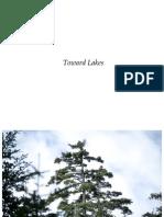 Toward Lakes