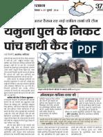 FIR against abuser custodians of 5 elephants in Delhi - Sukanya Kadian