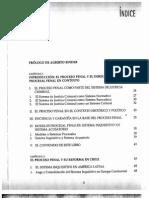 Introduccion Al Nuevo Sistema Procesal Penal DUCE MAURICIO