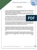 Informe-patologia en Madera