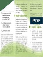 Triptico de seguridad 2.pdf