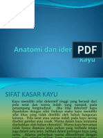 Anatomi Dan Identifikasi Kayu