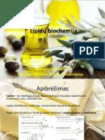 Lipidų biochemija