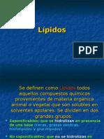 Lipidos - Bioquímica