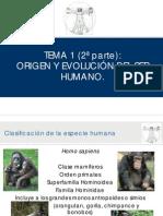 tema12parte-110920091645-phpapp02