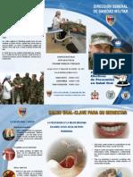 Plegable Salud Oral (1)