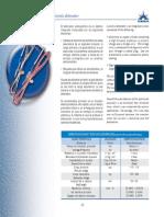 DETONADOR SISMOGRAFICO.pdf