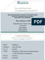 controlinternoinformecoso-100204123255-phpapp02