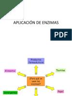 APLICACIÓN DE ENZIMAS.pptx