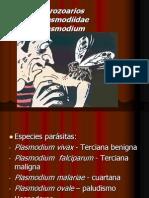 Clase de Plasmodium-2007