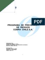 Anexo n 2.d Programa de Prev. Total de Riesgos
