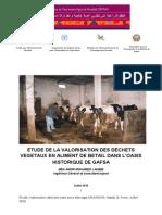 Etude Valorisation Des Dechets SIPAM Algerie