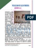 presentacion+gesfem.1