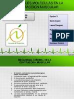Presentación ATP