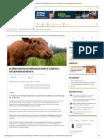 La Verdad Científica Del Hidrolizado de Carne de Vacuno en La Suplementación Deportiva (II)