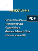 Clase de Inflamación Cronica I Periodo 2012