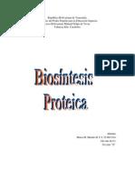 sintesis proteica
