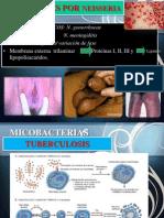 6. Enfermedades Infecciosas Exposiicon de Patologia