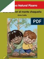 8 Pizarro
