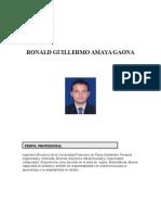 Hoja de Vida Ingeniero Ronald Amaya Gaona (1)