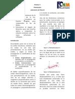D P7 Polarizacion