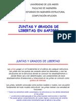 SAP2000 Juntas