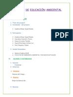 Informe Del Grupo (Original)