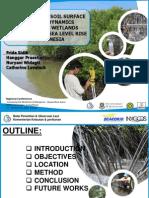 SLR - Mangrove PPT