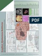 SnapShot Glioblastoma Cancer.cell 2012