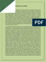 LOS OBJETIVOS DEL DESARROLLO DEL MILENIO ensayo.docx