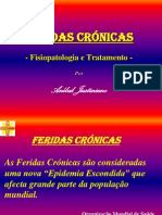 Feridas Crónicas - Fisiopatologia e Tratamento