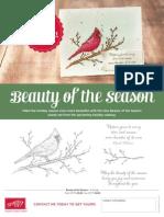 US Flyer Beauty of the Season