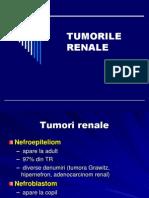 Tumorile renale