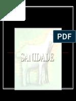 OVINO_sanidade_ovino
