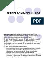 citoplasma celulara
