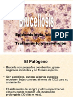 Brucelosis-Dr. WALLACH