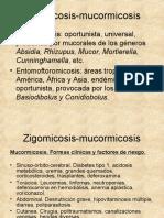 Zigomicosis-Mucormicosis