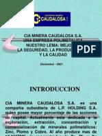 Gerencia CAUDALOSA.ppt