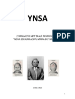 YNSA (polígrafo) (2)
