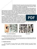 Densitometria.pdf
