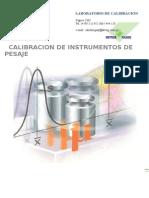 Informacion Calibracion Instrumento de Pesaje
