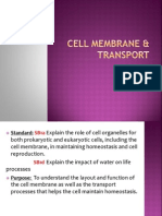 cell membrane  transport2