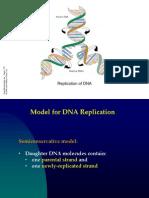 Molecular Biology 2