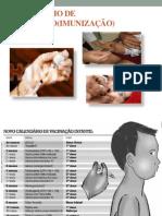 Aula- Calendário de Vacinação