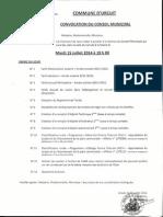 Conseil Municipal 15.07.20140001