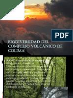 Biodiversidad Nevado Colima