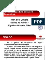 3 Fígado - Vesícula Biliar (Novo).pdf