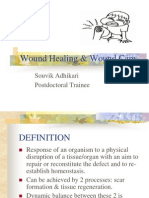 woundhealingwoundcare-091014152411-phpapp02