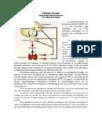 Fisiopatología Endocrina Tiroides